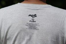 画像5: M&F Cuby Tシャツ 01 (5)